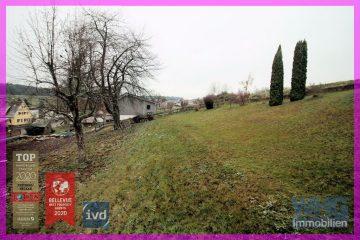 Teilerschlossenes Baugrundstück mit 2 Pkw-Stellplätzen und Gartenhaus, 75378 Bad Liebenzell / Maisenbach, Wohnen